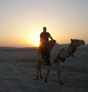 Camel rides in Doha